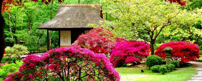 снимка: taringa.net