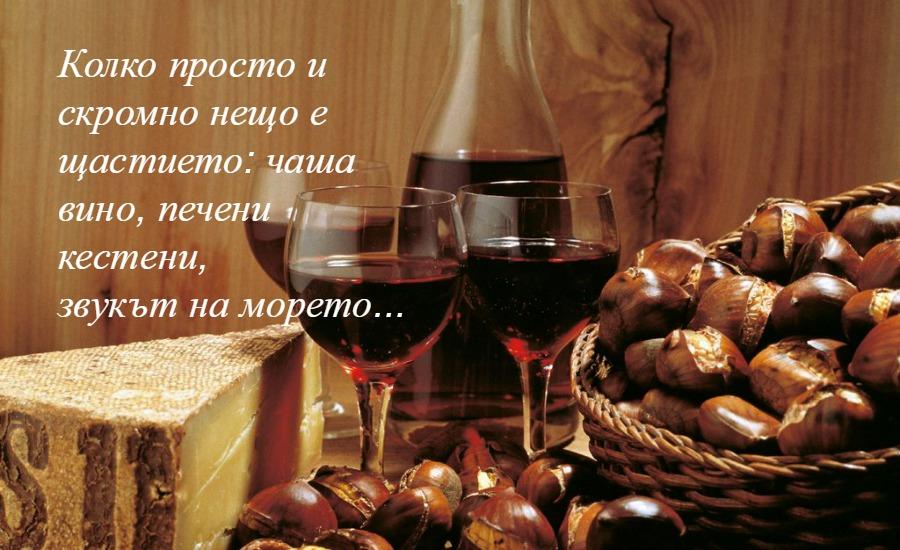 снимка за фон: magariblu.com