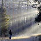 снимка: chelseawakefield.com