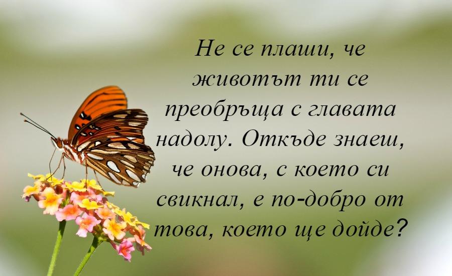 снимка за фон: marcyoh.com