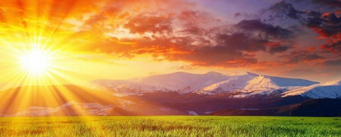 Снимка: apkpure.com
