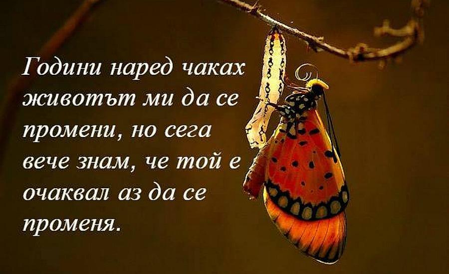 снимка за фон: pixabay.com