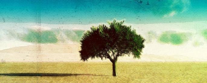 снимка: samiraemelie.deviantart.com