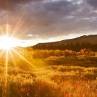 снимка: 7-themes.com