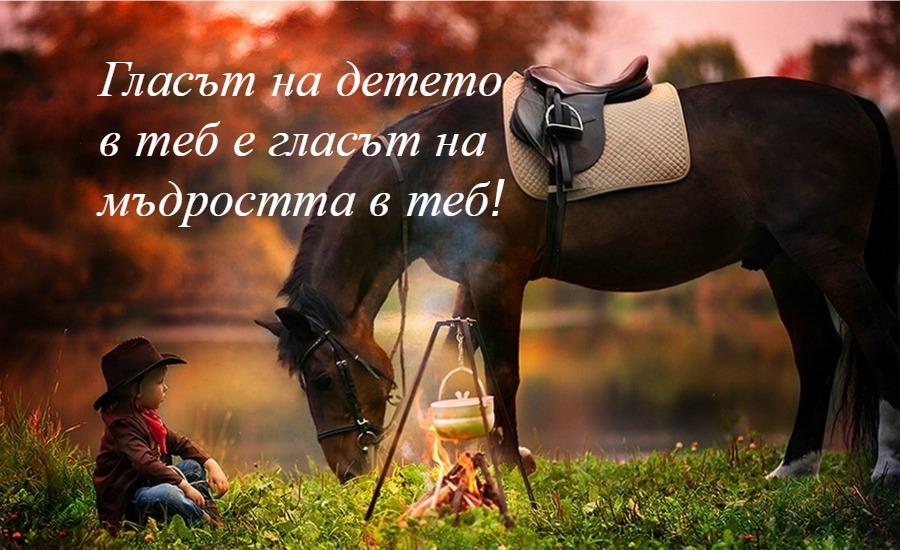 снимка: animalwall.xyz