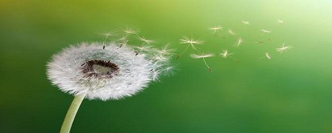 Снимка: quda100.com