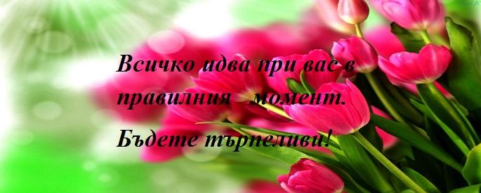 снимка: ashpazi.org