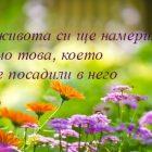 снимка: weneedfun.com