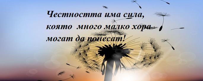 снимка за фон: vecteezy.com