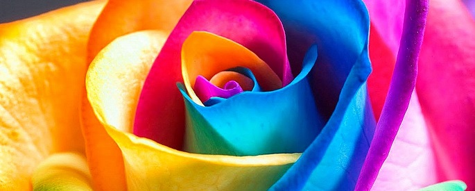 снимка: wallpapersafari.com