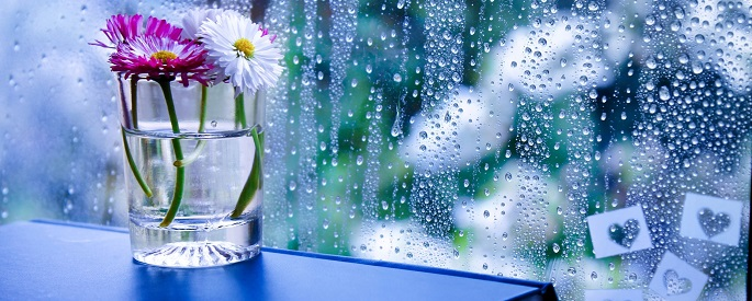 снимка: pxwalls.com