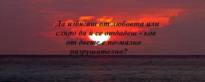 снимка за фон: stellatesori.com