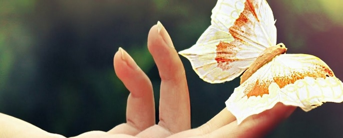 снимка: wallpapersshock.com