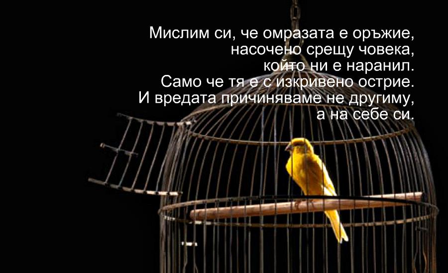 Мислим си, че с омразата си нараняваме другия. Но нараняваме самите себе си…