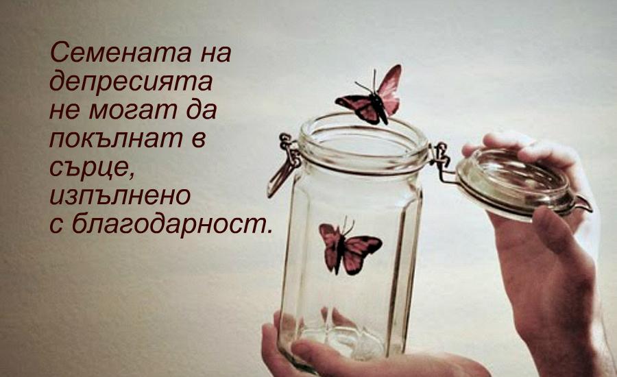 снимка за фон: Vebma.com